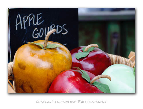 Apple Gourds For Sale