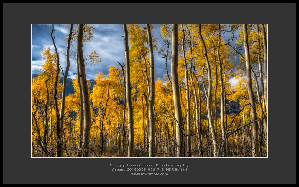 Aspens 20140928 076_7_8_HDR-Edit