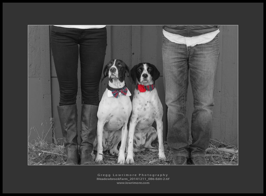 Meadowbrook Farm 20141211 086-Edit-2