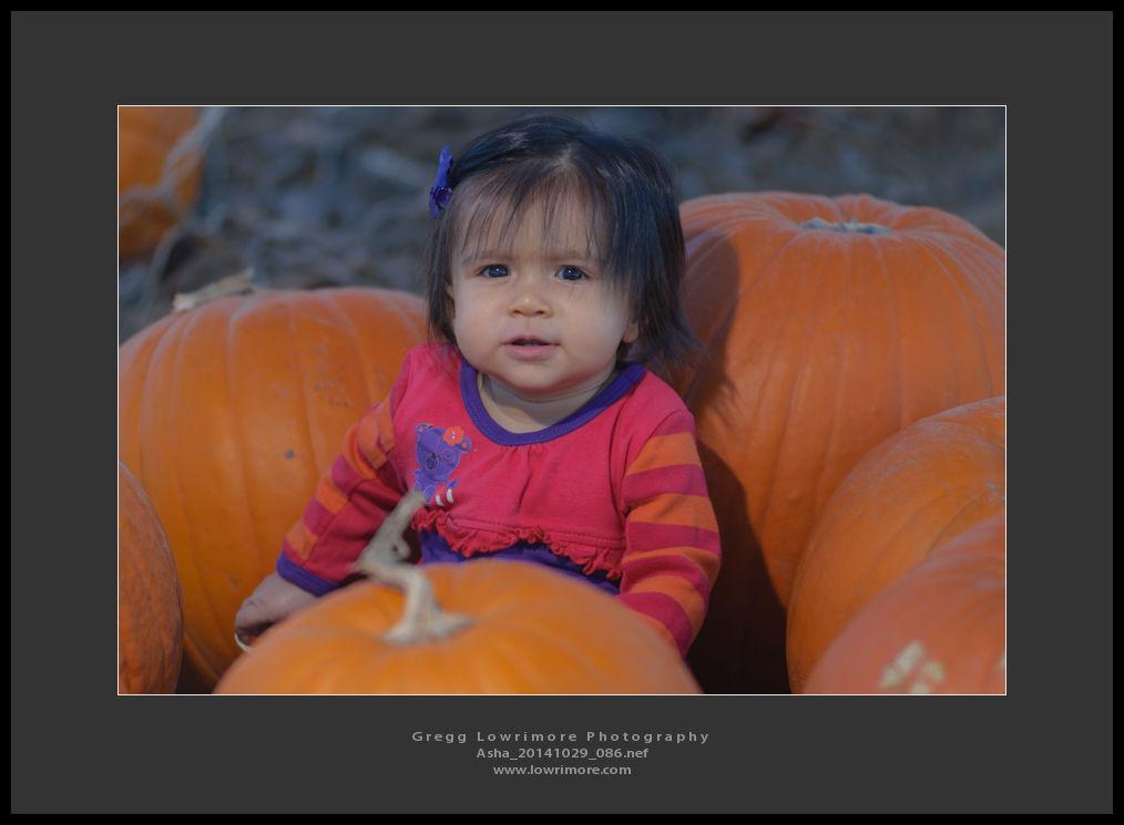 Asha 20141029 086