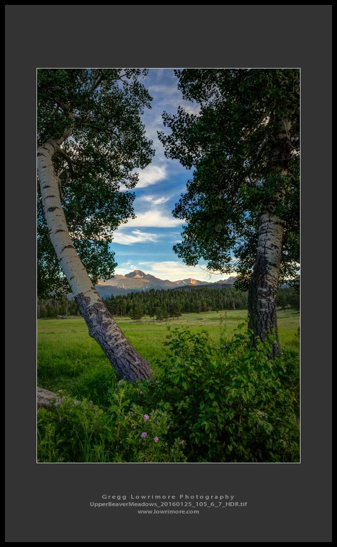 Upper Beaver Meadows 20160125 105_6_7_HDR